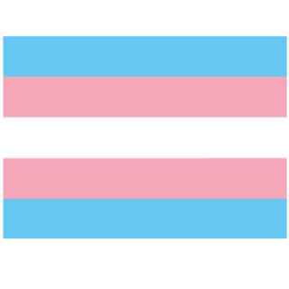 Transgender Flagge 150*90cm