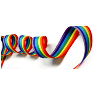 10 Meter Regenbogen-Band 25mm Stoffband