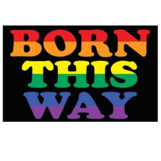 """Pride-Fahne """"Born this Way"""" 60*90cm"""