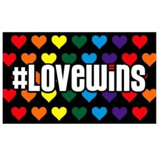 """Pride-Fahne """"Love Wins"""" 60*90cm"""