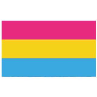 Pansexuell- Fahne 150*90cm